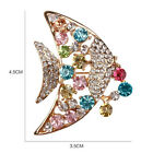 Gold Plated Crystal Cute Stoneset Brooches and Pins