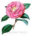 Stunning Camelia Fabric Quilt Block Multi Size FrEE ShiPPinG WoRld WiDE