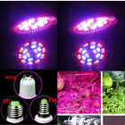 New 8W E14 LED Grow Light Growing Lamp Bulb for Flower Seed Plant Indoor Home