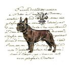 French Bulldog Manuscript Crazy Quilt Block Multi Sizes FrEE ShiPPinG WoRld WiDE