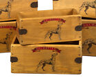 Dalmatian Vintage Box  Dog Treats Great Dalmatians Gift Storage Crate