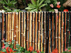 Black Bamboo Fence- Choice of 2 Sizes
