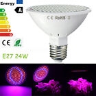 24W 200 LED Plant Grow Light E27 Red Blue Indoor Flower Veg Hydroponic Lamps