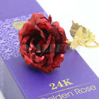 5 Color 24K Gold Plated Rose Flowers Valentine's Day Lovers' Gift Romantic Day