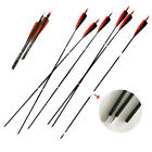 """12PC 3-take-down Arrow Shaft sp500 Pure Carbon 30""""  5'' Fletching 100Gr Point"""