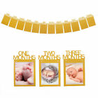 1st Birthday Boy Bunting Banner Baby1-12 Month Growth Record Photo Props Wall