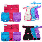 Внешний вид - Paw Inspired Reusable Washable Dog Diapers | Female Diapers for Dog Heat XS-XL