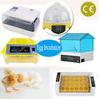 Automatic Clear Digital Chicken Duck Bird 4-56 Egg Incubator Hatcher Househould