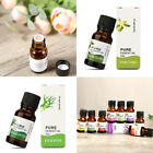 10 ML Natural Fragrance Aromatherapy Oils Essential Perfumed Beauty Skin Care