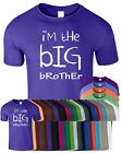 I m The Big Brother Mens Inspired Tshirt Funny Joke Logo Top T-Shirt Printed