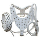 Spiked Studded Leather Dog HARNESS COLLAR LEASH for Large Breed Pit Bull Mastiff
