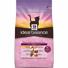natural balance dry cat food - Hill's Ideal Balance Adult Natural Chicken & Brown Rice Recipe Dry Cat Food