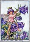 Canterbury Purple Fairy Quilt Block Multi Sizes FrEE ShiPPinG WoRld WiDE