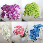 Artificial Butterfly Orchid Silk Flower Home Party Phalaenopsis Bouquet Decor
