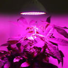 60/200 LED Grow Light Hydroponic Lighting Indoor Plant Veg Seeds Flower E27 Lamp