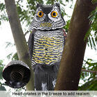 Garden Fake Prowler Owl With Moving Wing Bird Proof Repellent Decoy Pest Scarer