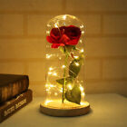 Внешний вид - Enchanted Rose Forever blooming In Glass With LED Light Wedding Home Xmas Decor