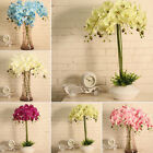 8Heads Wedding Party Home Decor Artificial Phalaenopsis Fake Orchid Flower