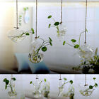 Home Decor 2019glass Flower Plant Stand Hanging Vase Ball Terrarium Container