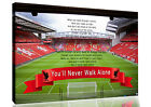 Coloured Liverpool Anfield You