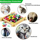 100pcs Cat Nail Caps Colorful Pet Cat Soft Claws Nail Covers For Cat Claw