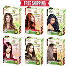 Henna Hair Color Instant Henna Hair Dye with Applicator Brush and Gloves