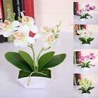 Artificial Butterfly Orchid Flower Plants In Pot Fake Home Wedding Party Decor