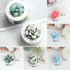 Succulent Plants Cacti Shape Silicone Mould Candle Soap Wax Epoxy Mold DIY Craft