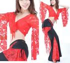 Sexy Belly Dance Lace Costume Top & Pants 9 Colours