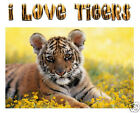 I LOVE TIGERS wall sticker/decal  or iron on t shirt transfer. Choose