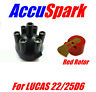 Ford Zephr/Zodiac Distributor cap + 6cyl  Red Rotor for Lucas 22D6