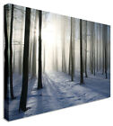 LARGE Forest Trees Snow Canvas Wall Art Pictures For Home Interiors
