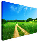 Large Great Green Field Expanse Landscape Canvas Wall Art Print
