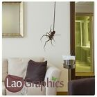 Hanging Spider - Insect transfer / Removable Wall Decal / Large Wall Sticker bn8