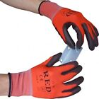 10 x UCI - PCN-RED - Ultimate lightweight Precision Gloves - PU Palm Coated
