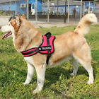 Nylon Reflective Safety Strap Dog Harness Velcro Patches IN TRAINING THERAPY DOG
