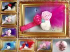Wholesale Baby Girls headband boutique rosette hair flowers
