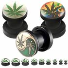 ear stretching kit plugs Flash tunnel piercing logo acrylic stretched 2 PCs 9CYZ
