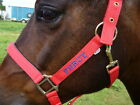 Personalised Embroidered Headcollar FROM £8.90.Pony Size