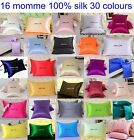 1 pc 100% Top Grade Silk Filled Pillows + 16MM 100% Silk Pillowcase 30 colors