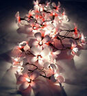 colour of lights - 35 FLOWER FRANGIPANI DECOR STRING LIGHTS, FAIRY LIGHTS - *CHOICE OF: *7 COLORS
