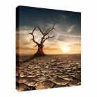 Global warming concept Canvas Art Cheap Wall Print Large Any Size
