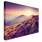 Landscape Purple Haze Purple Flowers Canvas Art Cheap Wall Print Picture AnySize