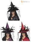 Ladies Deluxe Witch Hat+ Feathers + Spider Witches Halloween Fancy Dress Costume