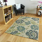 New Medium Large Floral Modern Rugs Easy Clean Thin Blue Living Room Carpet Rugs
