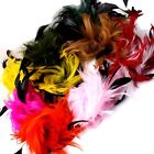 Assorted Ladies Women's Wedding Feather Hat Hair Clipper Brooch Optional