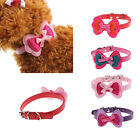 New Double Bowknot Adjustable Pet Collars Cat Dog Puppy Pet Collars Tide