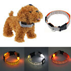 Pet Dog LED Lights Leopard Flash Night Safety Waterproof Collar S-XL Tide