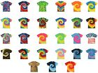 Tie Dye T-Shirts, Multi-Color, Adult  Large, Heavyweight Cotton, Gildan