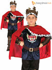 Age 4-11 Boys Deluxe Medieval King Arthur Prince Knight Costume Kids Book Week